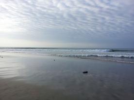 mancora ocean