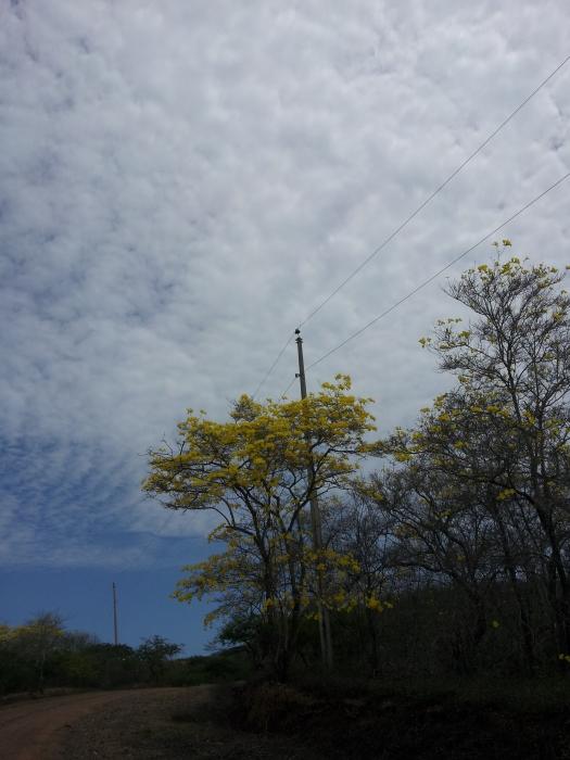 2014-05-10 11.53.25