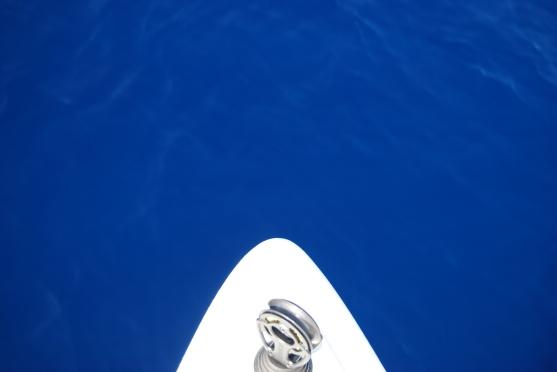 the deep blue