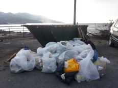 That's how much rubbish we picked up in under two hours. Waterfront, Road Town, Tortola