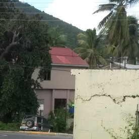 chickens rule the street in Tortola