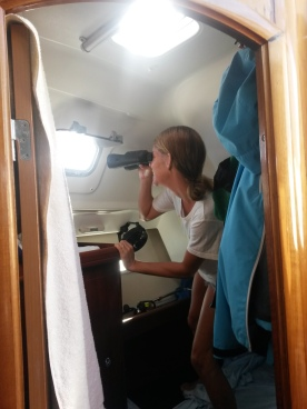Spying on the neighbours haha