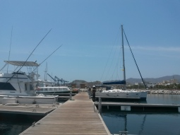 At the marina